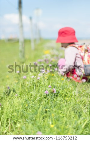 Young child with backpack on trek, discover grass and flowers - stock photo