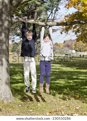 Young children hanging in a tree in the park - stock photo