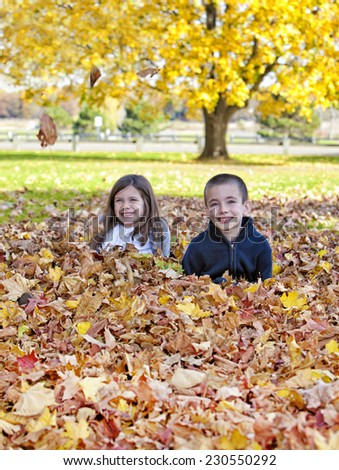 Young children playing in the leaves in autumn - stock photo