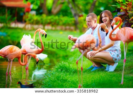 young couple feeding flamingo birds with hands on pond