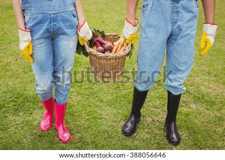 Young couple holding a basket of freshly harvested vegetables in garden - stock photo