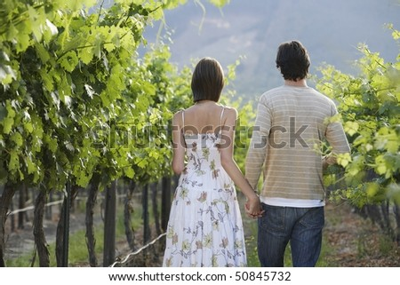 Young couple in vineyard, back view