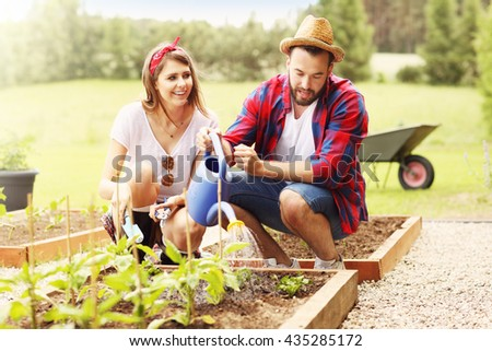 Young couple planting organic vegetables - stock photo