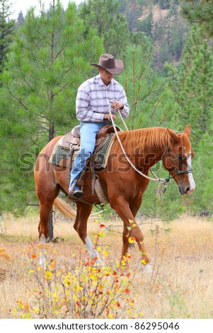 Young cowboy training his horses in a meadow - stock photo