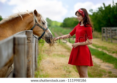 Young cute woman feeding horse on farm - stock photo