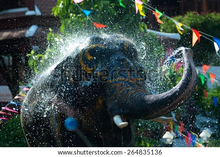 Young elephant fun and happiness splashing water in Songkran Festival ( Water Festival ) in Thailand.