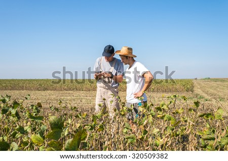 Young farmers in soybean fields - stock photo