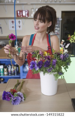 Young female florist arranging flower in vase at counter - stock photo