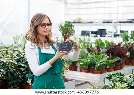 Young florist  in greenhouse - stock photo