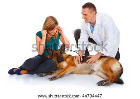 Young girl and a vet examining her dog isolated on white - stock photo