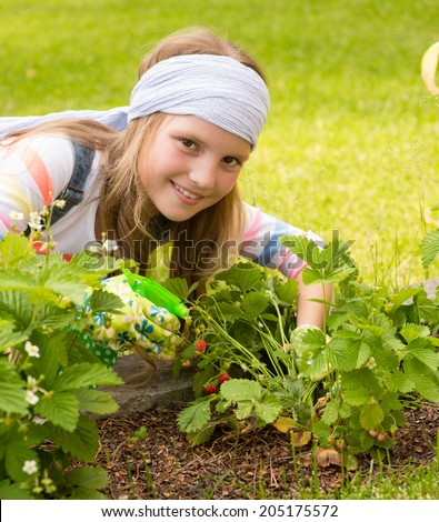 young girl gathering berries