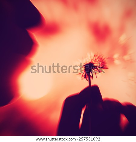 Young girl holding dandelion and blowing gently. Sun in the background, concept of fragility, love, romance and delicateness. Subtle radial zoom blur defocusing with retro red instagram filter. - stock photo
