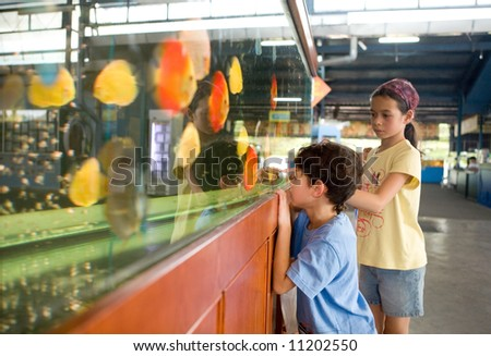 Young girl showing her little brother the different type of colorful fish in a big tank. - stock photo