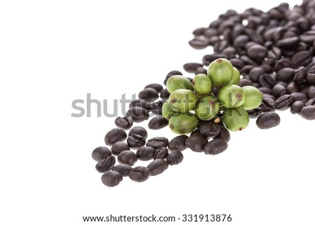 Young green coffee bean and roasted coffee isolated on white background