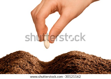 young hand seeding