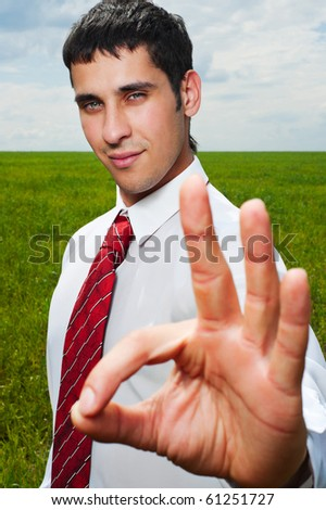young happy businessman showing ok sign over green meadow - stock photo