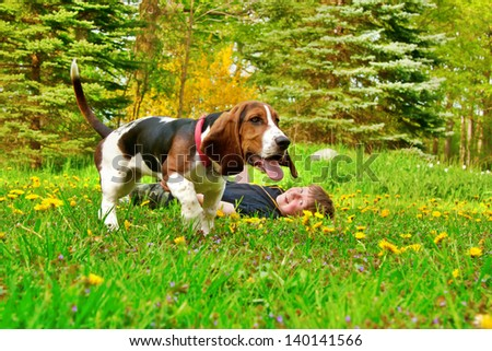 young happy caucasian boy playing with a basset hound in field of yellow dandelion flowers - stock photo