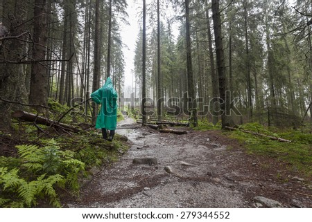 Young Hiker wearing green raincoat walking on Tatry forest path on rainy day. Poland - stock photo