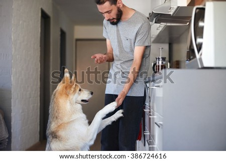 young hipster man bonding with his pet dog with tricks and treats, shake paw - stock photo