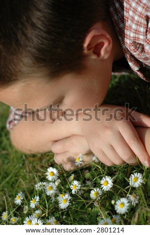 Young kid in a daisy meadow - stock photo