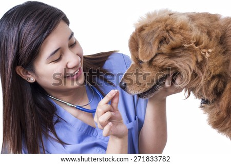 Young lady veterinary doctor giving tablet medicine to a sick dog. Isolated in white background.