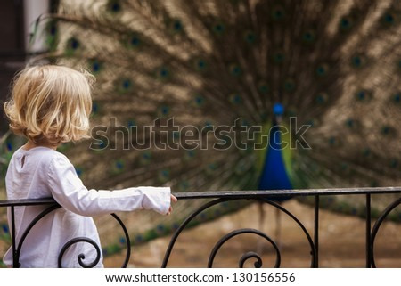 Young little girl meeting indian peacock. Focus on the girl. - stock photo