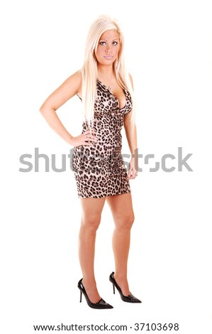 Young, lovely girl in a brown and white dress and long blond hair, with  high heels standing in the studio for white background.