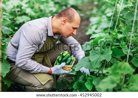 Young male gardener working in the garden. - stock photo