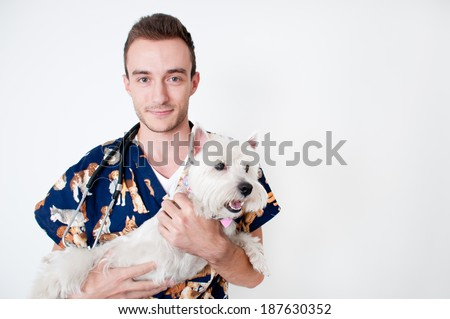 Young male vet caring of a cute dog - stock photo