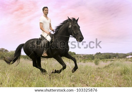 young man and his black stallion in  a field - stock photo