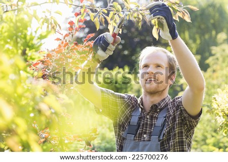 Young man cutting branch in garden - stock photo