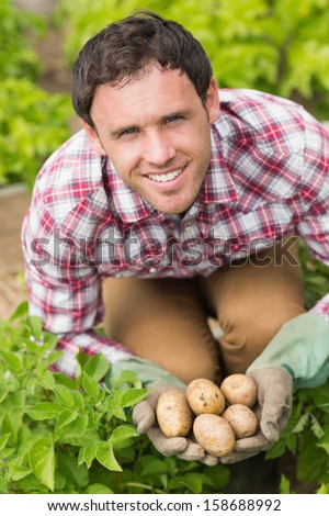 Young man holding some potatoes while crouching in his garden - stock photo