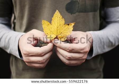 Young man holding yellow leaf