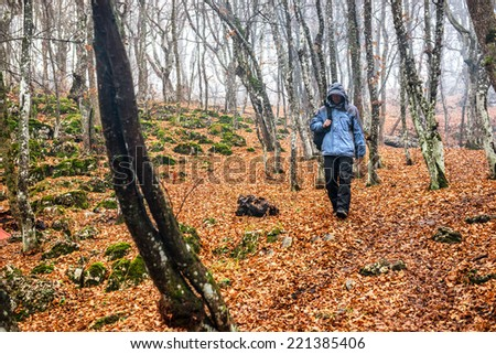 Young man in the autumn forest with big oak trees - stock photo
