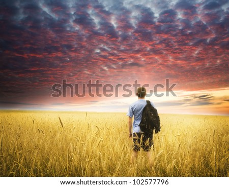 young man on yellow wheat meadow. Conceptual design. - stock photo