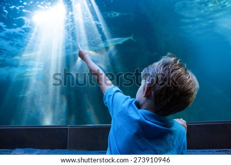Young man pointing the light across the tank at the aquarium - stock photo