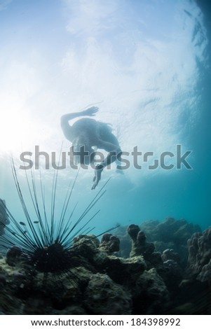 Young man snorkeling in a tropical sea near sea urchins - stock photo