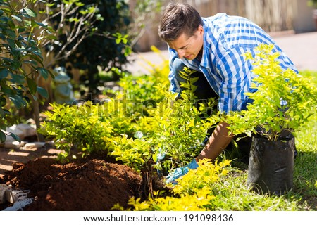 young man transplanting a new plant in his garden - stock photo
