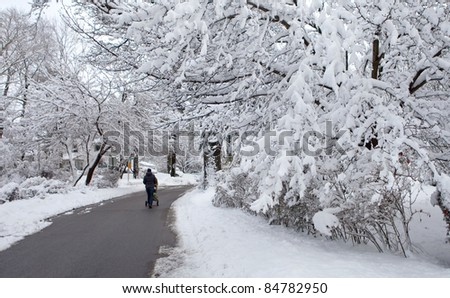 Young mother with a stroller in a park on a snowy winter day - stock photo