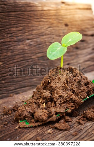 Young plant growing on brown soil with shovel on green background - stock photo