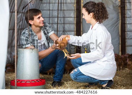 young spanish man farmer chatting with woman veterinarian in coop