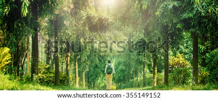 Young traveler walking into deep forest in a sunny day - stock photo
