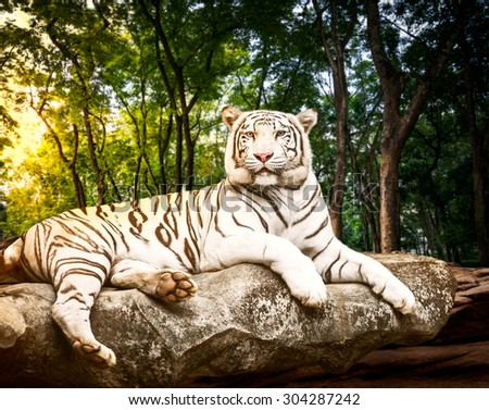 Young white bengal tiger in the act of relax on stone at natural forest - stock photo