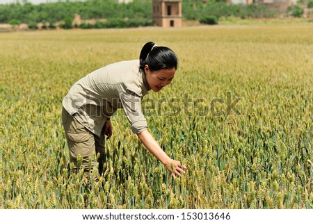 young woman at wheat grain field  - stock photo