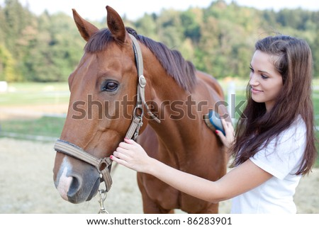 Young woman brushing a beautiful horse. Selective focus. - stock photo