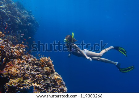 Young woman diving on a breath hold by a coral reef - stock photo