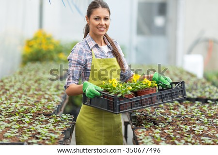 Young woman gardening in greenhouse.She selecting flowers. - stock photo
