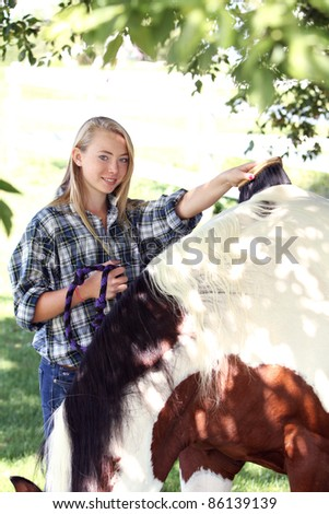 Young woman grooming a horse - stock photo