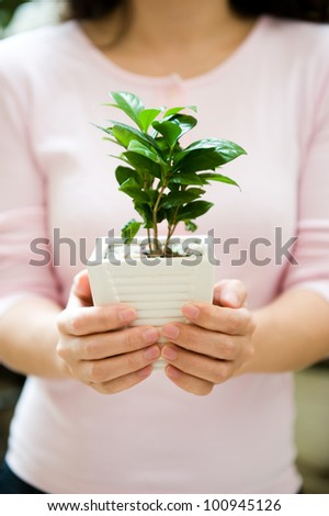 Young woman holding a plant in pot - stock photo