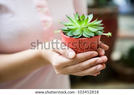 Young woman holding a plant in pot